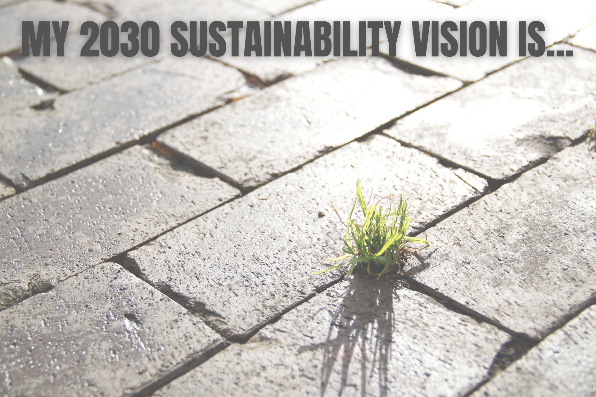 What is your Sustainable Vision for 2030?